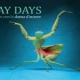 MAY DAYS – Incontro con la Danza d'autore
